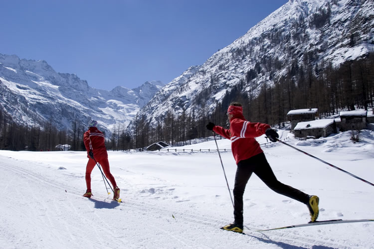 Due persone praticano lo sci nordico