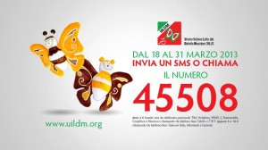 Campagna UILDM 2013