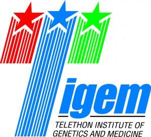 Logo Tigem
