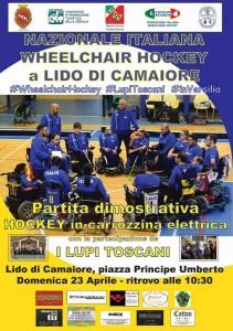 wheelchair hockey versilia